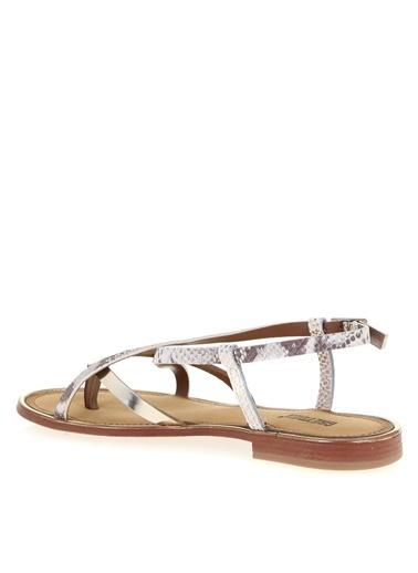 Greyder Sandalet Altın